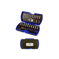 22PCS PRECISION BIT SET